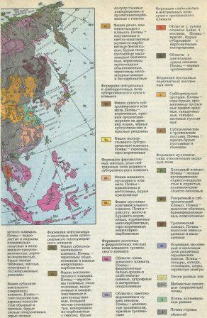 Почвы Евразии